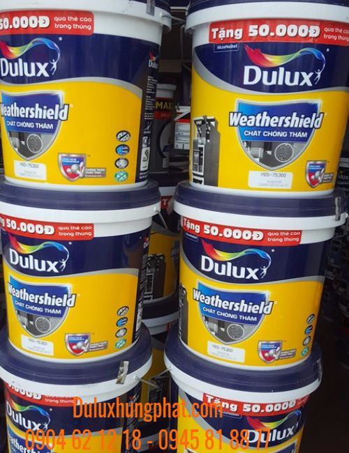 Chất chống thấm Y65 Dulux Weathershield