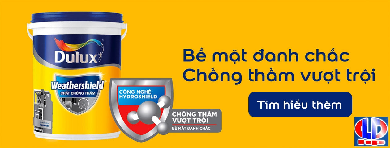 chat chong tham dulux weathershield y65